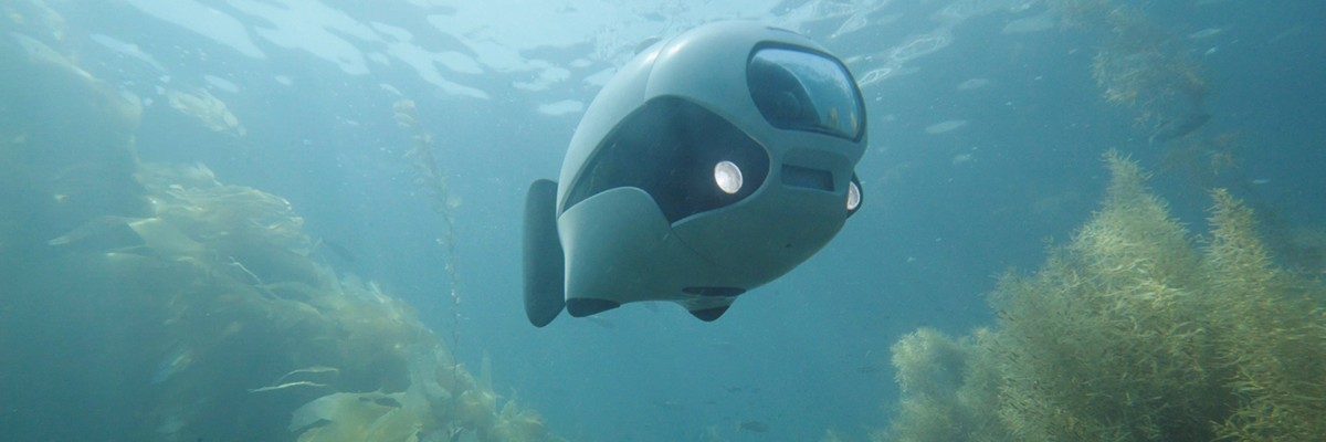 세계 최초! 무선 컨트롤 물고기 드론 '비키'